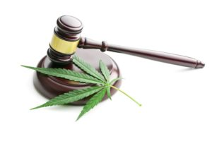 Proposed Cannabis Regulations