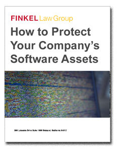 Software Protection Whitepaper